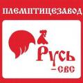 Русь-СВС