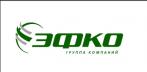 ЭФКО-Воронеж