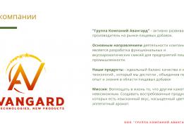 Группа Компаний Авангард